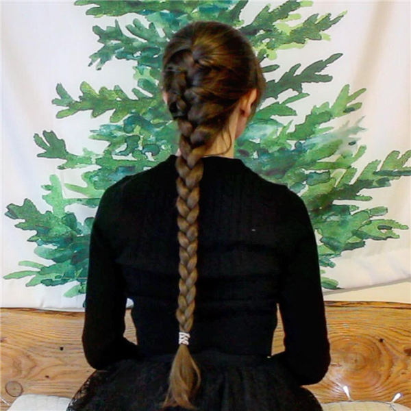 Dutch Braid 1