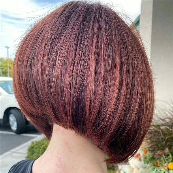 Brown Inverted Bob 1